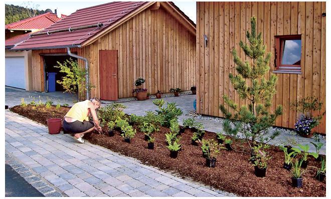 Pflegeleichter Garten   selbst.de