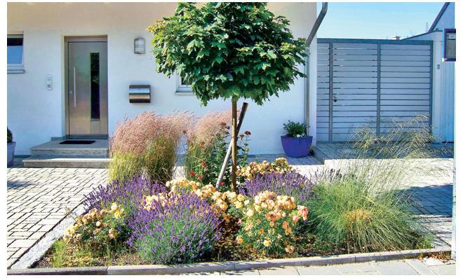 Elegant Pflegeleichter Garten