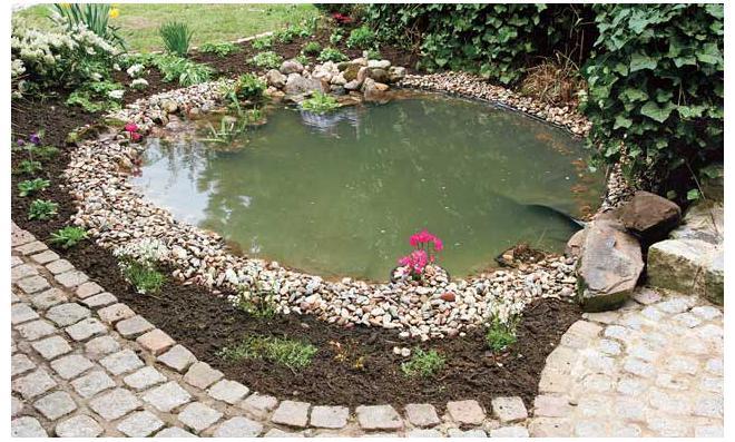 Sanierter Gartenteich