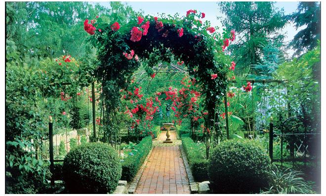 Gartenweg Aus Rotem Klinker
