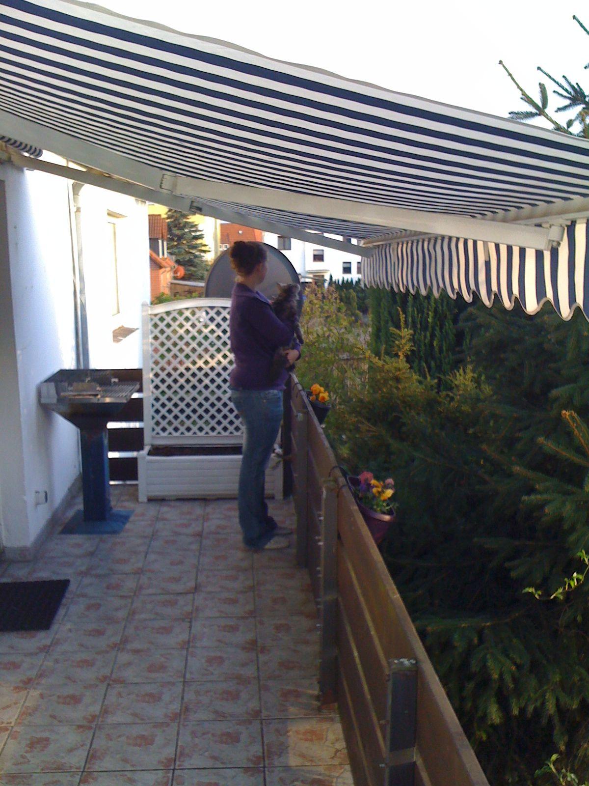 Katzennetz An Grossem Oben Offenen Balkon Selbst De Diy Forum