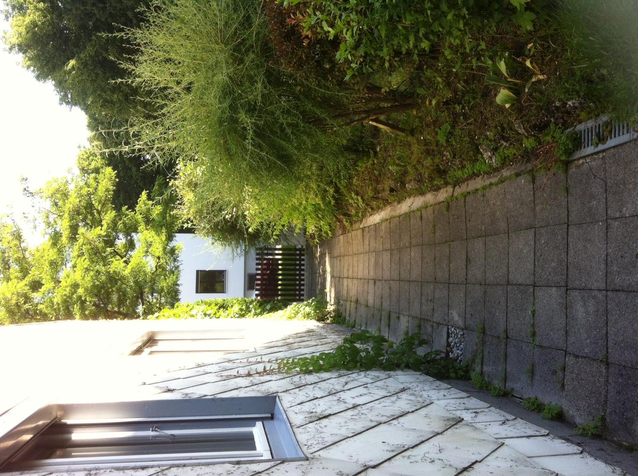 Betonlasur Fur Gehweg Und Terrasse Selbst De Diy Forum
