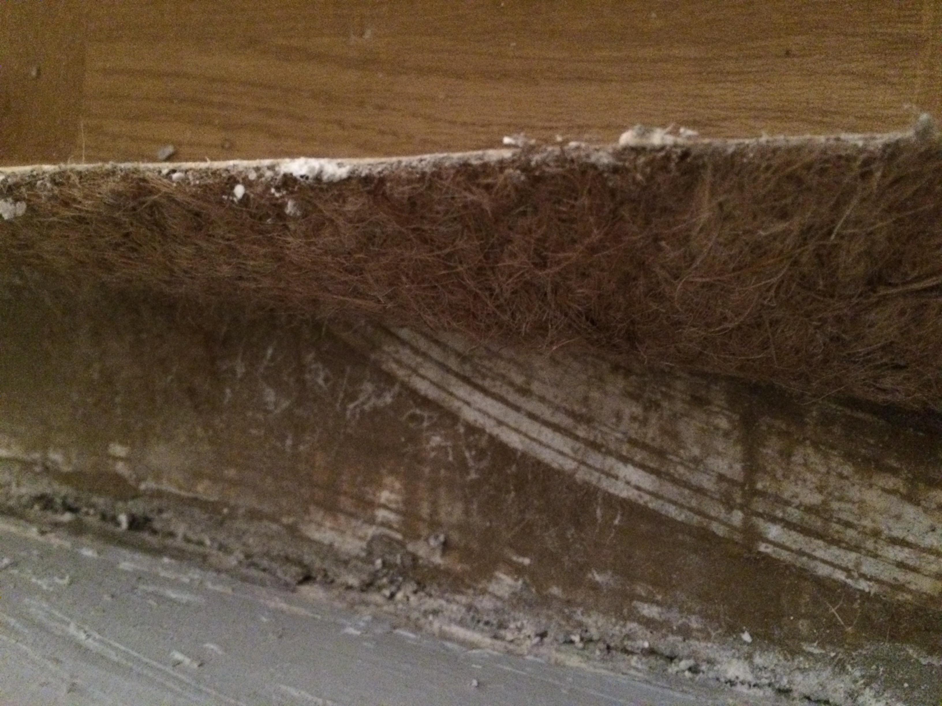 Fußbodenbelag Asbest ~ Asbest im pvc bodenbelag selbst diy forum